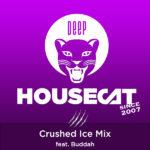Crushed Ice Mix - feat. DJ Buddah