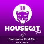 Deephouse First Mix - feat. PJ Parker