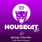 Spring Time Mix - with Alex B. Groove