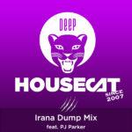 Irana Dump Mix - feat. PJ Parker